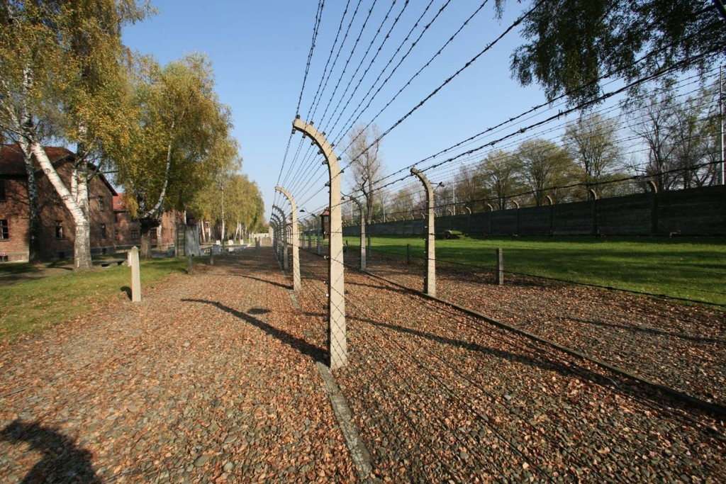 Take the tour to Auschwitz and walk along the historical avenues of death.